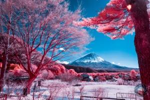 Fuji san infrared infrarouge